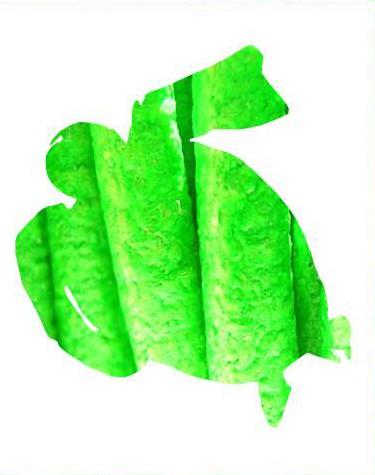 Verde Flúor